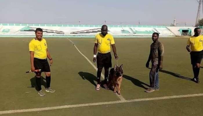 Un arbitro sudanese guida un cane per proteggerlo durante le partite